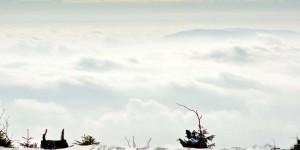 Nebel über Bayern