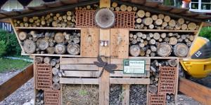 Insektenhotel im Harz