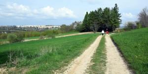Wanderweg in Polen