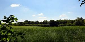 Felder in der Emscherregion