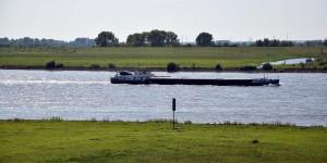 Naturschutzgebiet Rheinaue