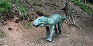 Ursaurier am Wanderweg