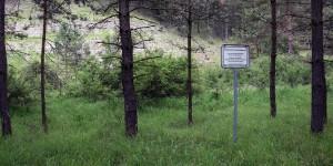 Wanderweg im Jonastal