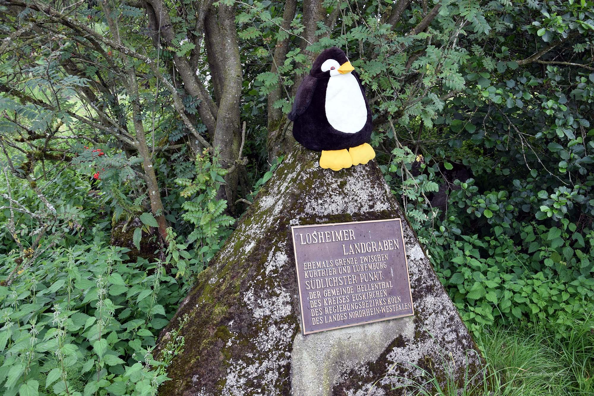 Pingu war auch am südlichsten Punkt von NRW