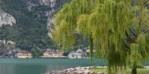 Ufer des Gardasees