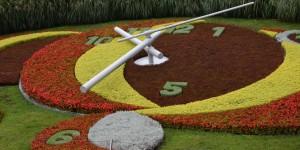 Blumenuhr in Genf