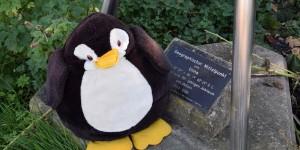 Pingu war natürlich auch dabei