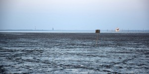 Blick über das Wattenmeer
