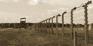 Zaun in Birkenau