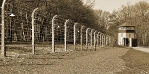 Zaun des KZ Buchenwald