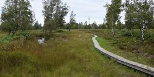 Naturschutzgebiet Struffelt