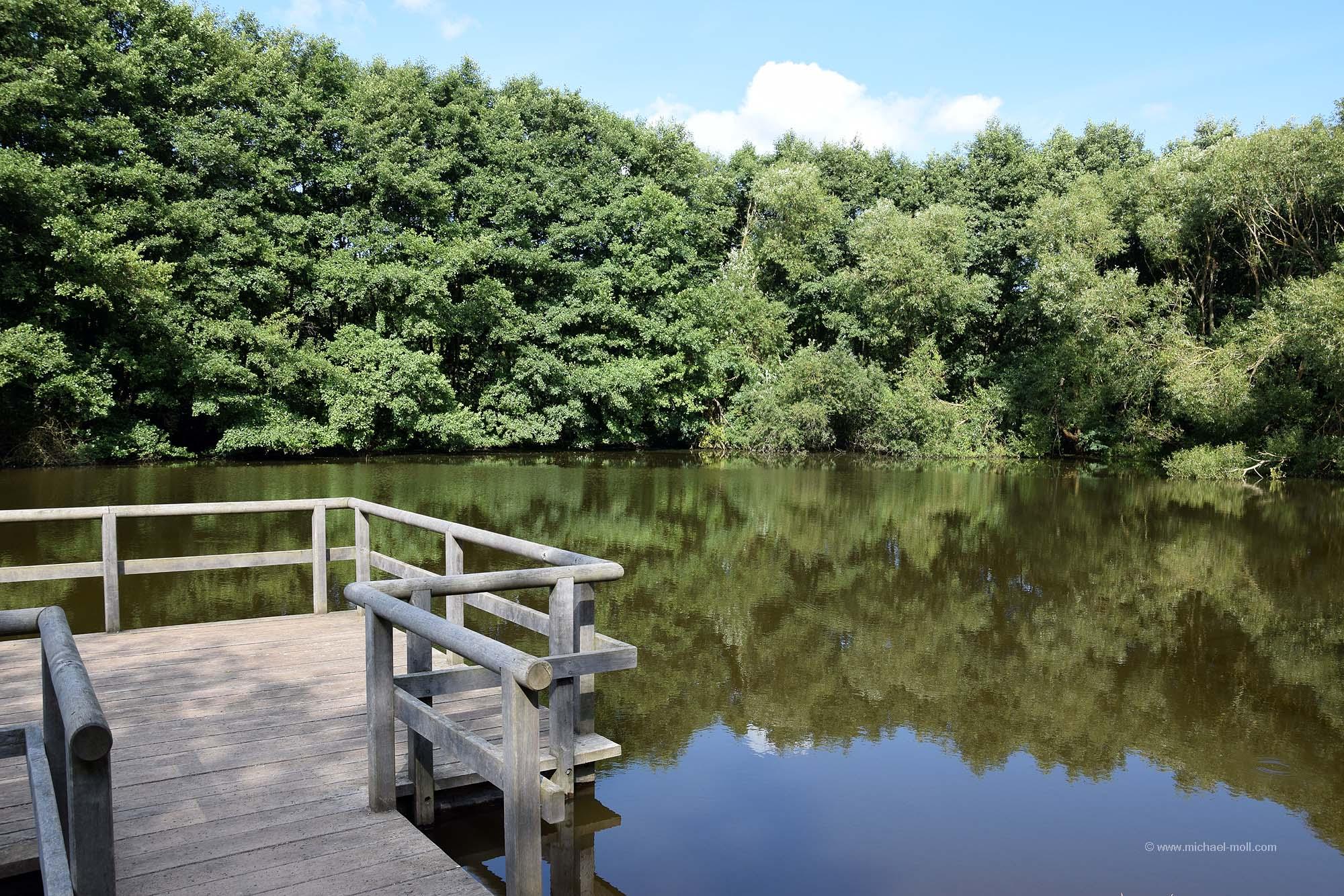 Römerweiher bei Nettersheim