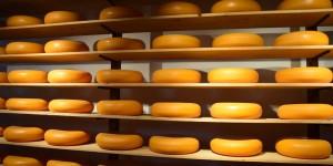 Käse in einem Käsemuseum