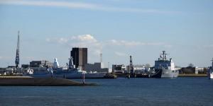 Hafen von Den Helder