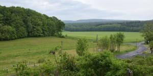 Landschaft im Weserbergland