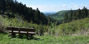 Ausblick in den Harz