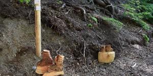 Wanderschuhe aus Holz