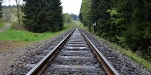 Gleis der Harzer Schmalspurbahn