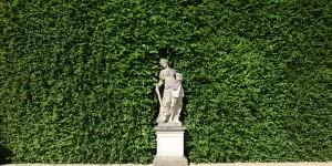 Hecke im Barockgarten