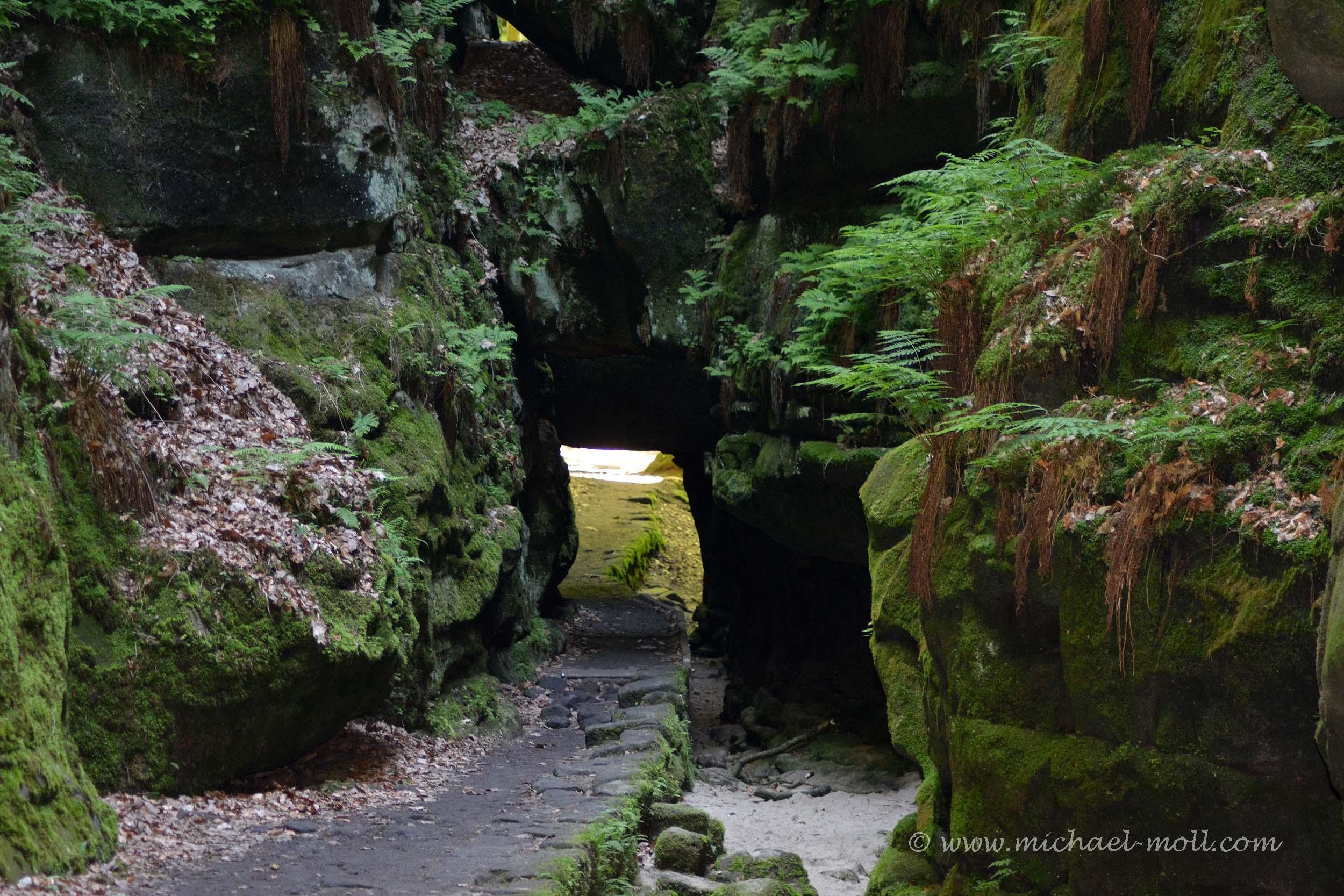 Der Malerweg führt durch den Uttewalder Grund