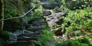 Treppen am Pfaffenstein