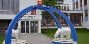 Eisbären vor dem Rathaus in Hammerfest