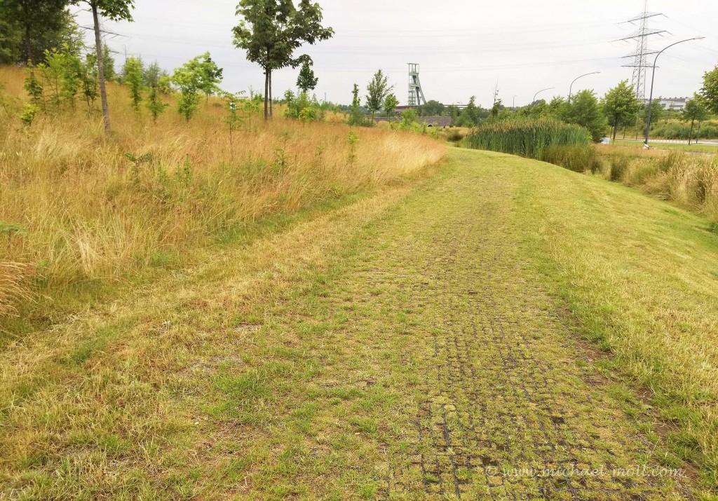 Ein echter Wanderweg durchs Grün