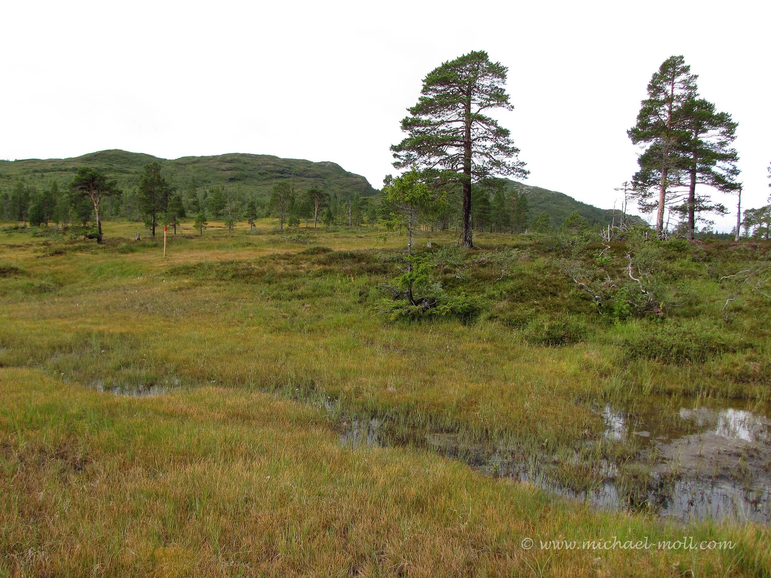 Einsame Landschaft