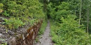 Wanderweg im Zeller Hamm
