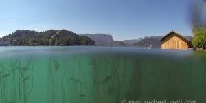 Der See in Bled