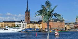 Palmen in Stockholm