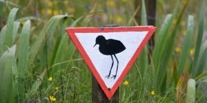 Vogelhinweisschild