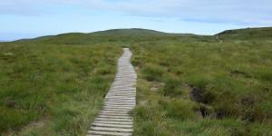 Wanderweg auf der Insel Handa
