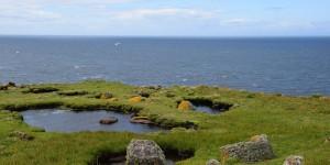 Landschaft auf der Vogelinsel Handa