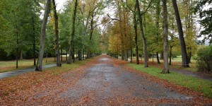 Herbststimmung im Gräflichen Park