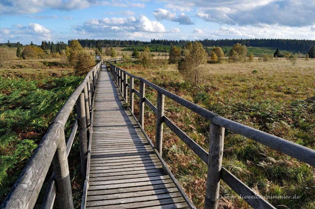 Holzsteg mit Geländer