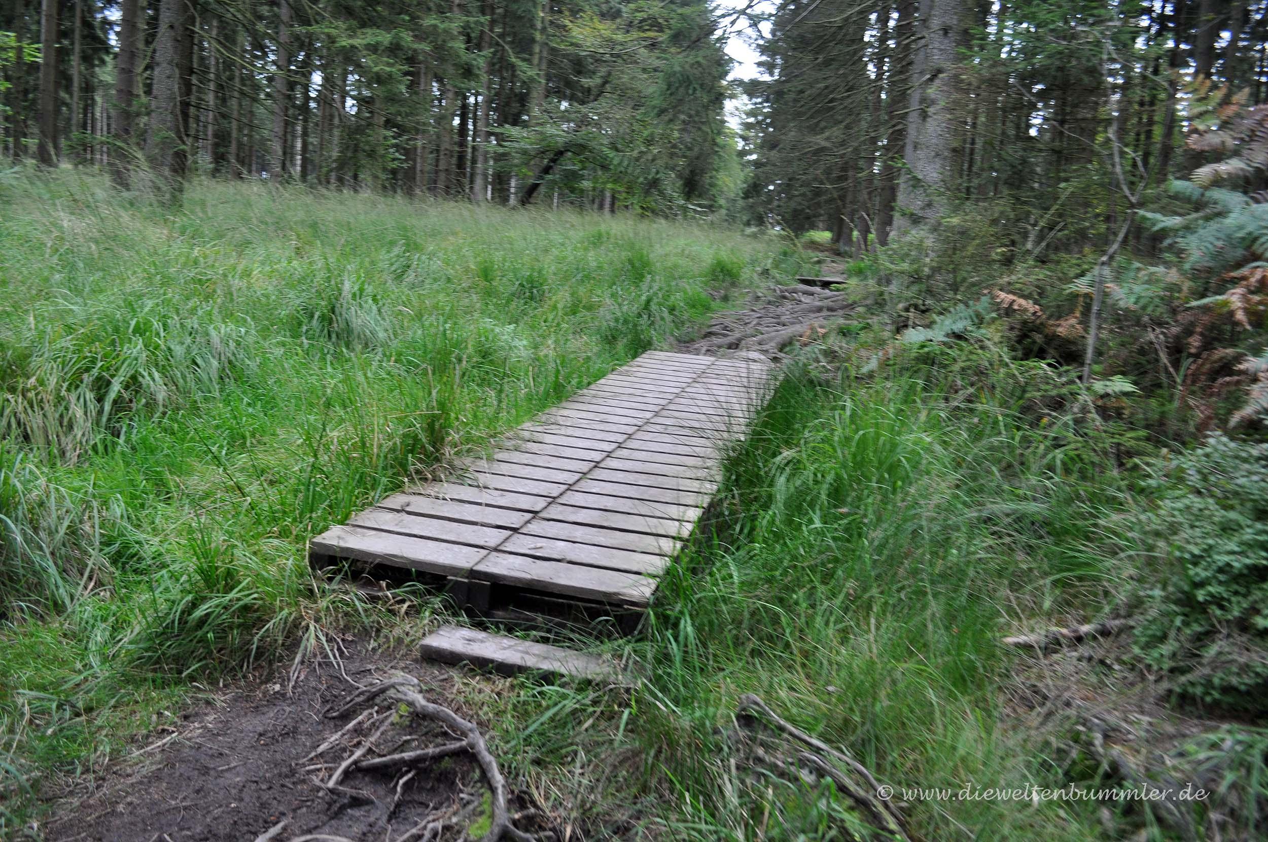 Sehr kurzer Holzsteg