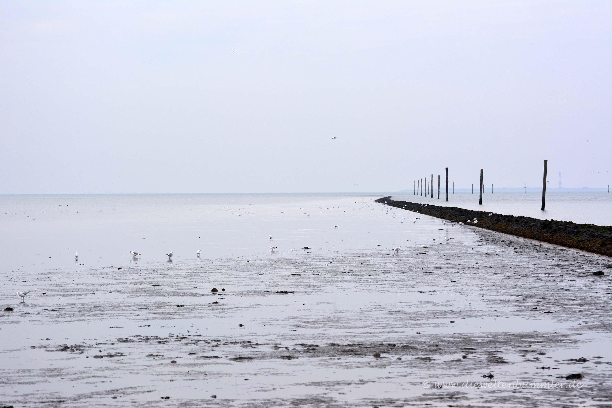 Steindamm an der Hafeneinfahrt