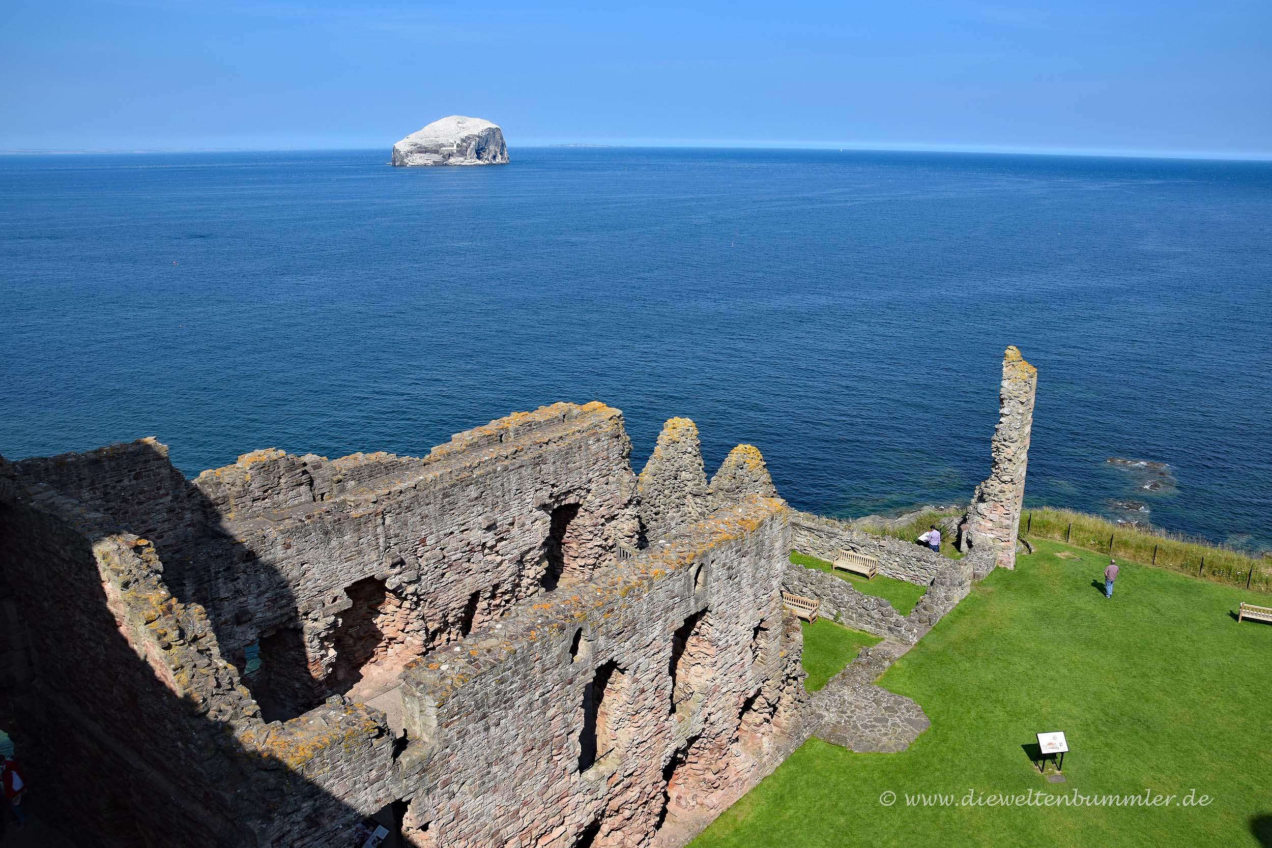 Tantallon Castle und Bass Rock