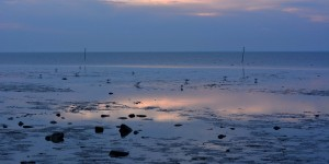 Watt in der Nordsee