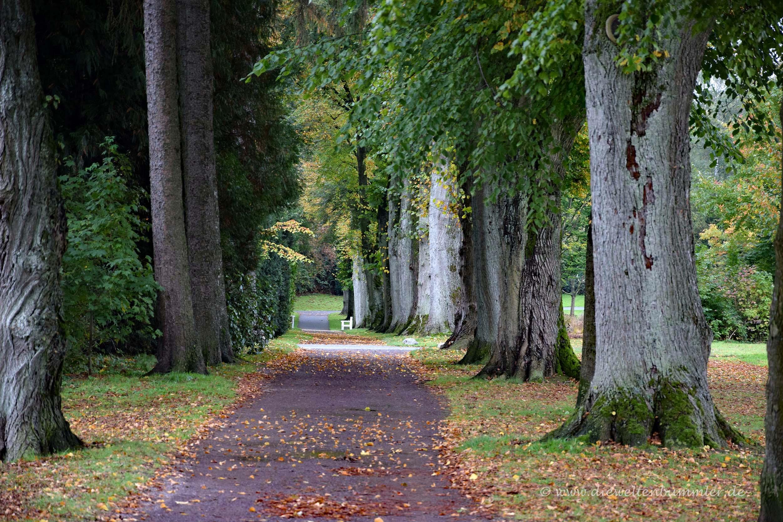 Weg vom Park ins Zentrum