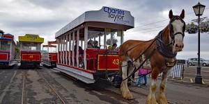 Pferdestraßenbahn auf der Isle of Man
