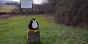 Pingu auf dem Dreiländereck
