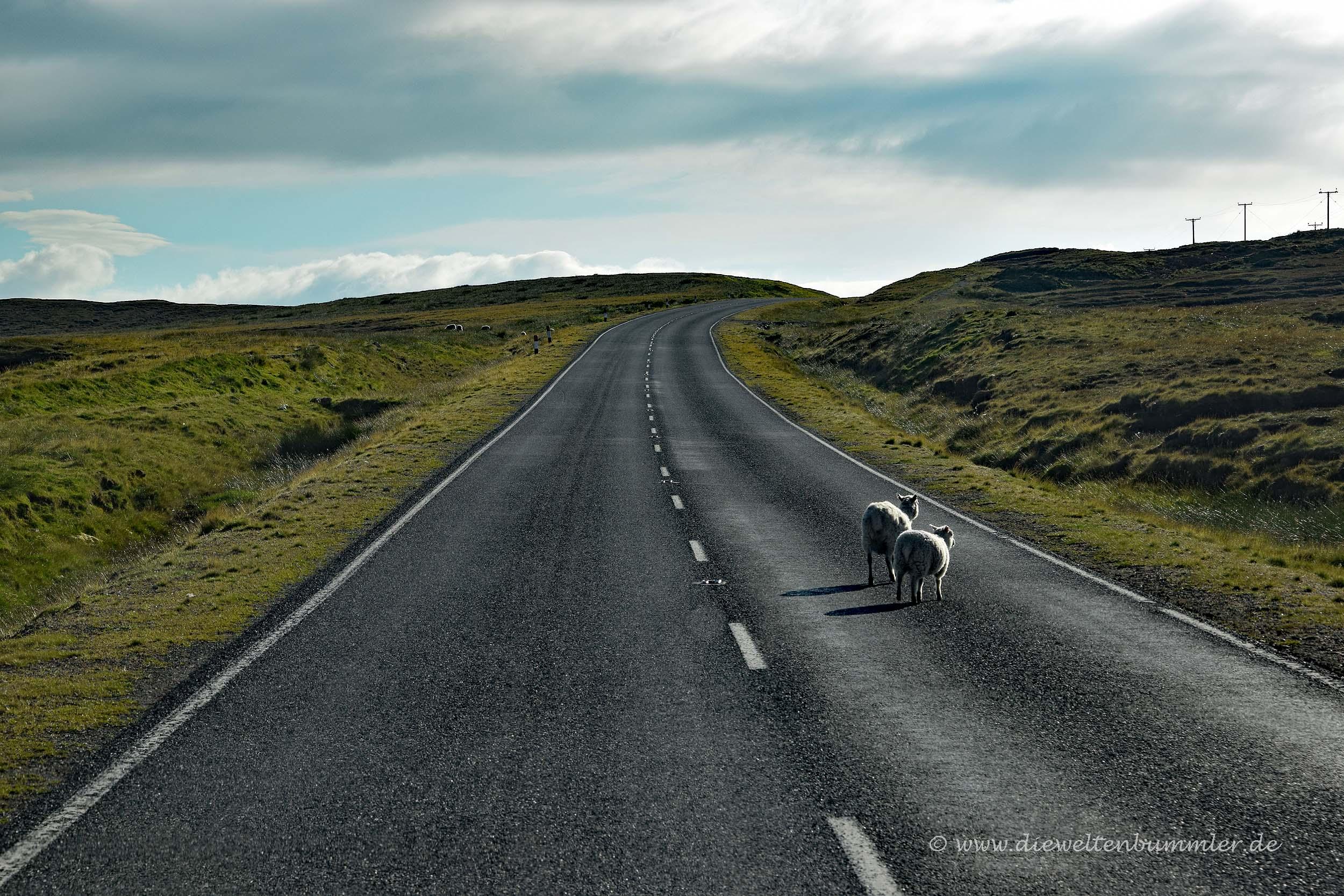 Weite Straßen auf den Shetlands