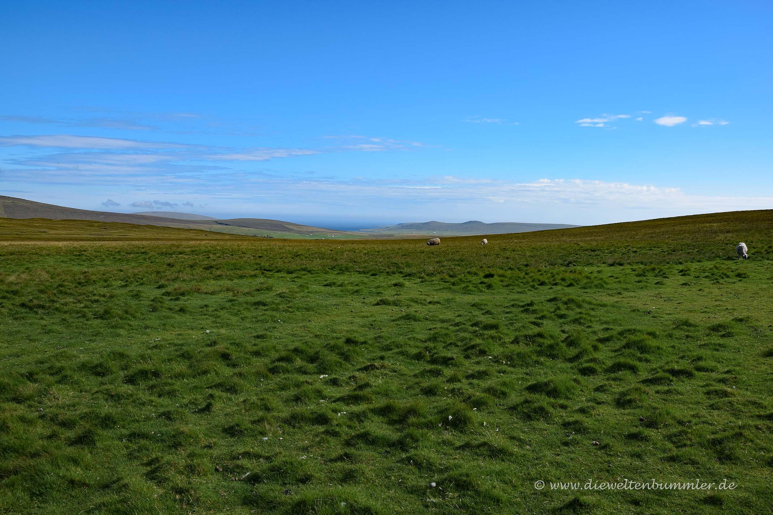 Unendliche Weite auf den Shetland-Inseln