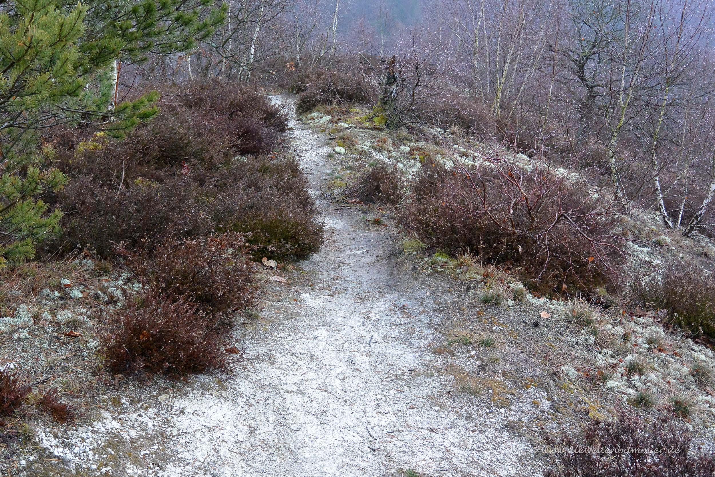 Wanderweg auf dem Questenberg