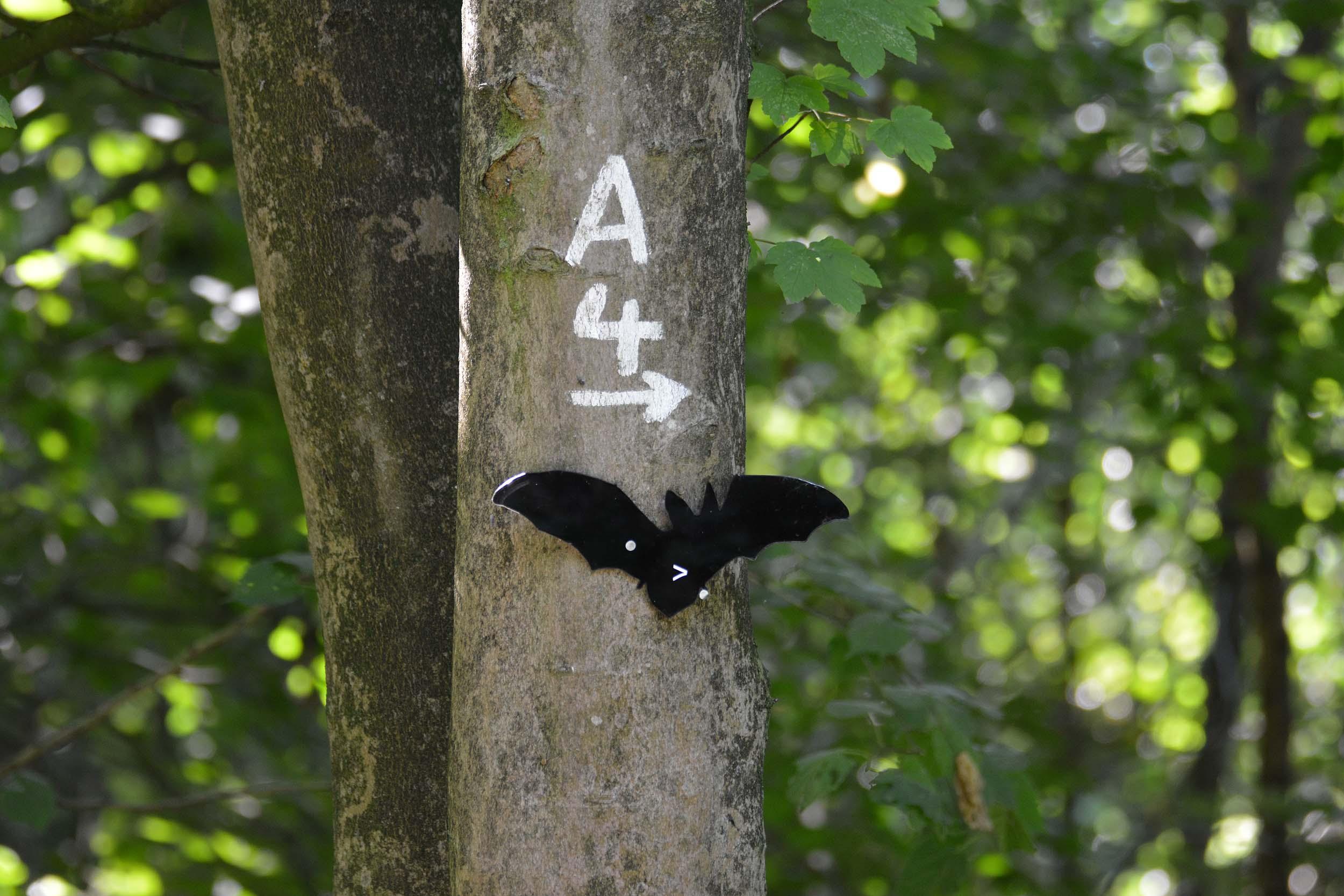 Wegbeschilderung in Form einer Fledermaus