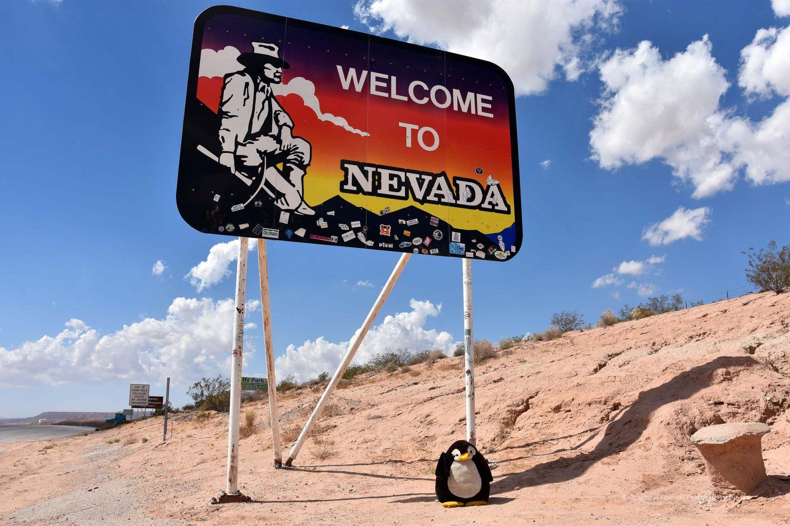 Pingu in Nevada