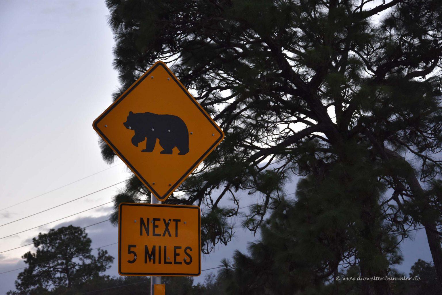 Achtung Bären
