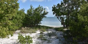 Strand auf den Keys